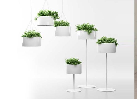 magnuson-greencloud-planters