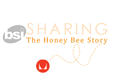 honey bee story